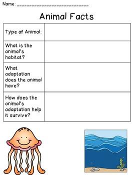 Ocean Animals (Habitats and Adaptations)