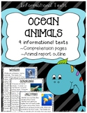 Ocean Animals Informational Texts