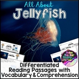 Ocean Animals Reading: Jellyfish Differentiated Reading Passages & Comprehension