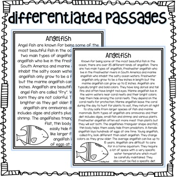 Ocean Animals - Non-Fiction Passages + graphic organizers - PREVIEW!
