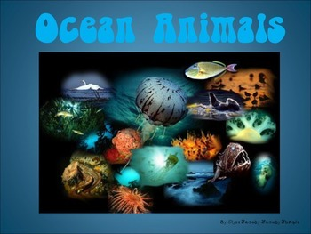 Ocean Animals PowerPoint