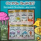 Ocean Animals Report Brochures