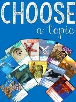 Ocean Animals Research & Report Resources