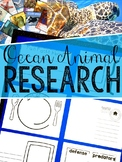 Ocean Animals Research & Report Resources