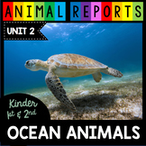 Ocean Animals Research Reports - Sharks  Nonfiction Writing  First Grade Reading