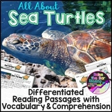 Ocean Animals Reading: Sea Turtles Differentiated Passages
