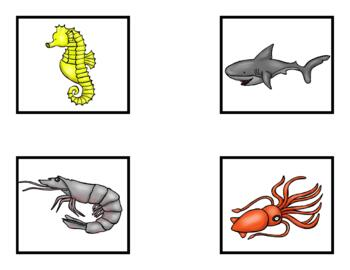 Ocean Animals--Vocabulary Word Cards