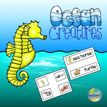 Ocean Animals--Vocabulary Word Cards
