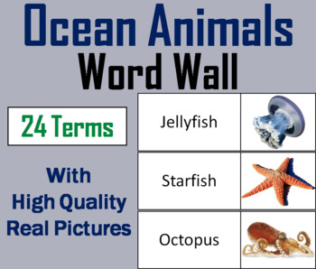 Ocean Animals Word Wall Cards