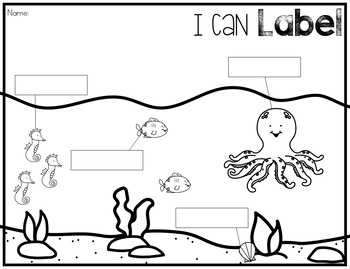 Ocean Animals Writing Center