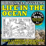 Ocean Animals from A to Z (The Aquatic Biome)