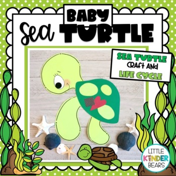 Baby Sea Turtle and Life Cycle: Summer and Ocean Craft
