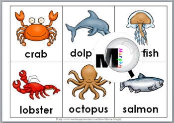 picture regarding Printable Ocean Animals known as Bingo Printable - Ocean Pets Bingo Match - Ocean Literacy
