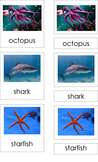 Ocean Creatures (3 Part Montessori Cards)