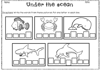 Sea Animals- Vocabulary Pack