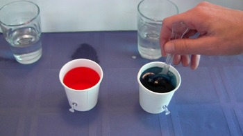 Ocean Currents Video Demonstration: Warm Water Rises While