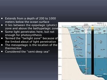 Ocean Depth