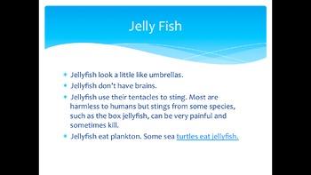 Ocean Fact Book