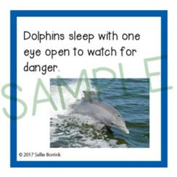 Ocean Unit Activity - Fun Fact Cards for Games, Bulletin Board