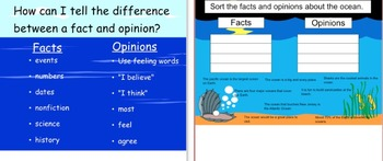 Ocean Fact & Opinion Lesson