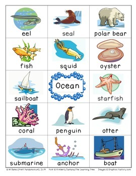 Ocean Flashcards Theme Words Poster Vocabulary Pictionary