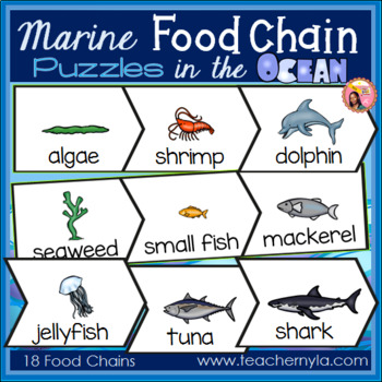 Ocean Food Chain Puzzles
