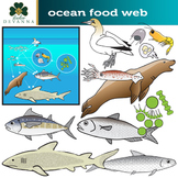Ocean Food Web Clip Art