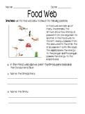 Ocean Food Web Worksheet & Assessment