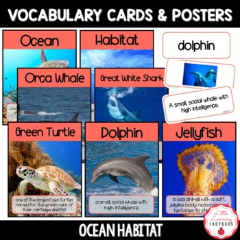 Ocean Habitat Non-Fiction Resources {Close Reads & Informational Text}