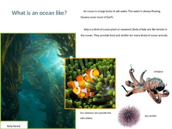 Ocean Habitat Power Point