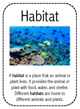 Ocean Habitat Read and Draw