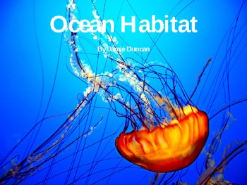 Ocean Habitat and Animal Slide Show
