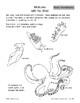 Ocean Invertebrates: Mollusks
