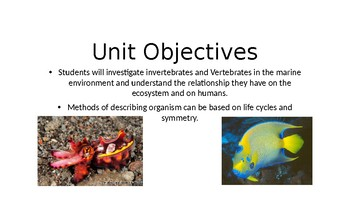 Ocean Invertebrates with free Student Focus Notes in Preview window