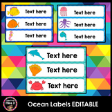 Editable Classroom Labels, Name Labels, Book Labels (Under the Sea)