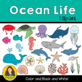 Ocean Life Clipart for classroom and TPT sellers!