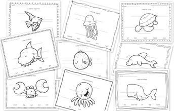 Ocean Life Investigations