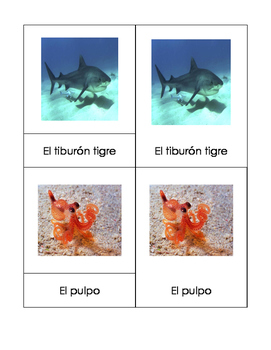 Ocean Life - Montessori 3-part cards