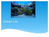 Ocean Life Power Point