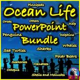 Ocean Life PowerPoint & Activities Bundle