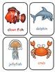 Ocean Life Printable