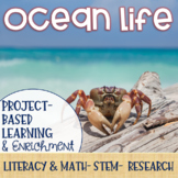 Ocean Life Project-Based Learning & Enrichment for Literacy, Math, and STEM