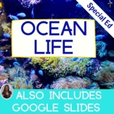 Ocean Life Unit for Special Education