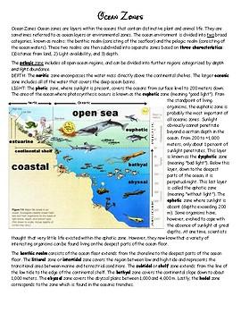 Ocean Life Zones Unit