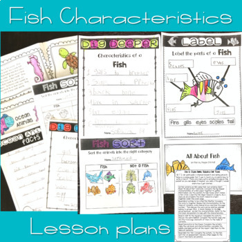 Fish & Ocean Life for the Primary Grades