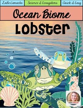 Ocean Animals Lobster