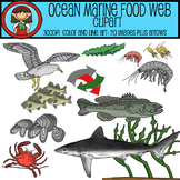 Ocean Marine Food Web Clip Art Set - 20 images plus arrows