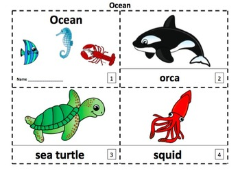 Ocean Marine Life 2 Emergent Reader Booklets