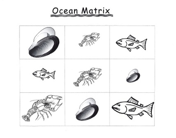 Ocean Matrix