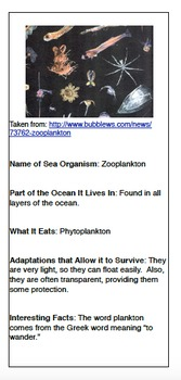 Ocean Organisms Trading Cards Research and Technology Project
